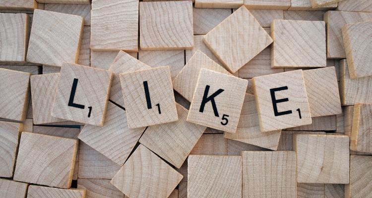 CONSCIE jetzt auch bei Facebook – werden Sie Fan! 1
